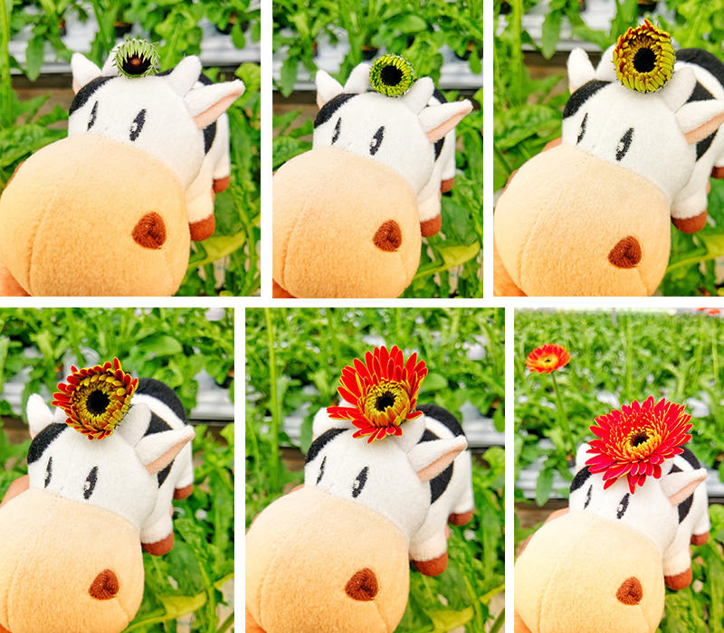 blog_0807_02.jpg